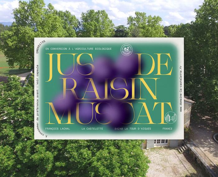 Grape juice, La Castelette 2