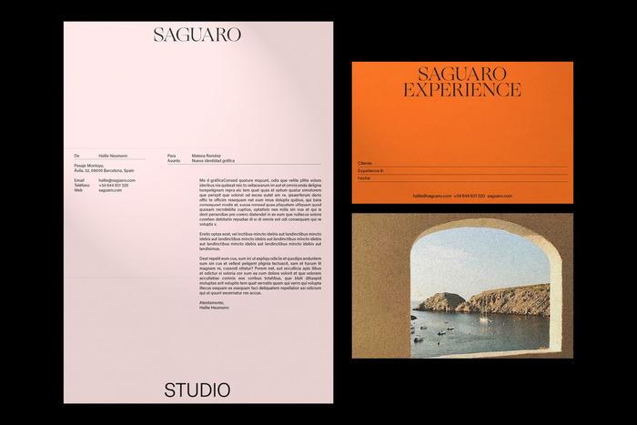 Saguaro visual identity 2