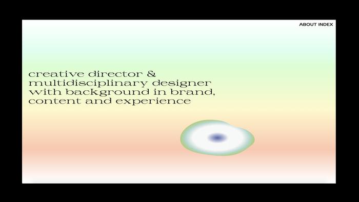 Phuong Nguyen portfolio website 2