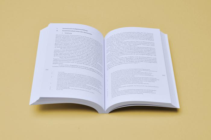 Recht + Politik book series 4