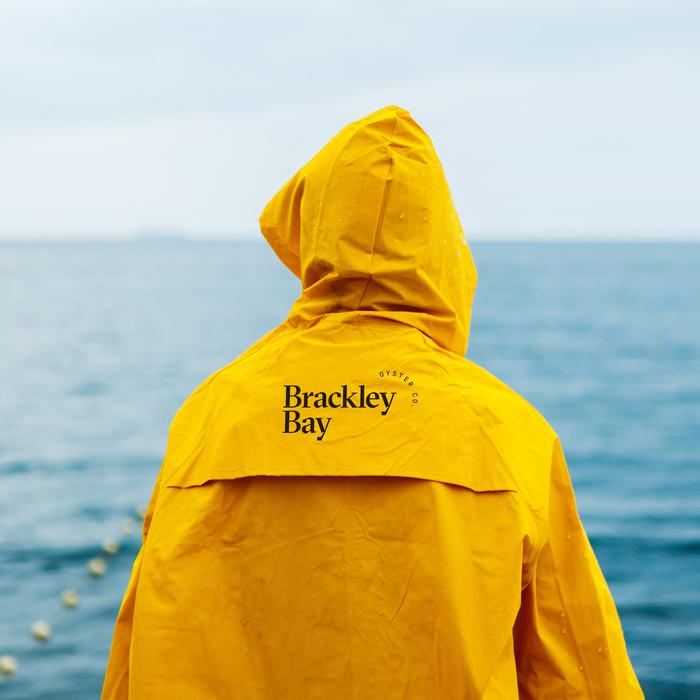 Brackley Bay Oyster Co. visual identity 1