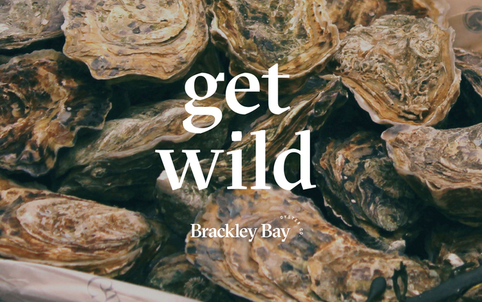 Brackley Bay Oyster Co. visual identity 6