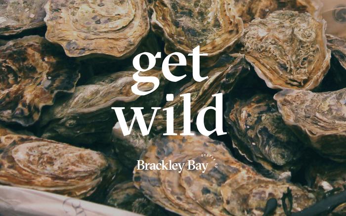 Brackley Bay Oyster Co. visual identity 6