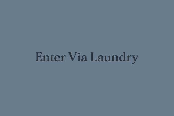 Enter Via Laundry website 1