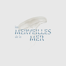 Les Merveilles de la Mer (rebranding proposal)