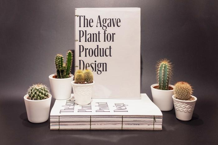The Agave Plant for Product Design 1