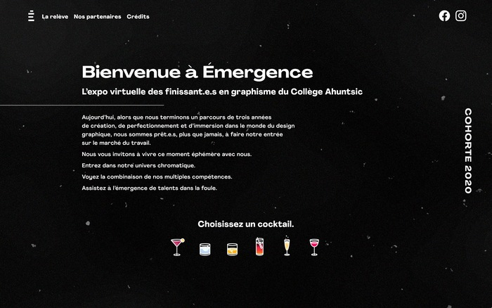 Émergence graduation website 6