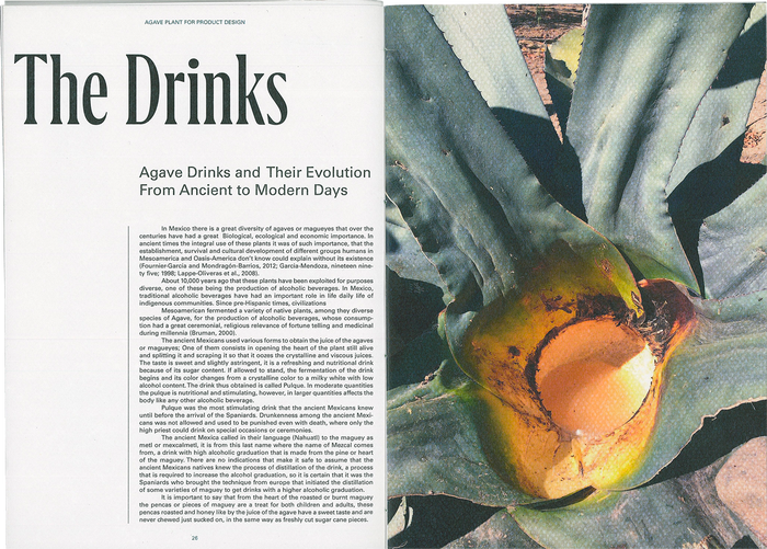 The Agave Plant for Product Design 2