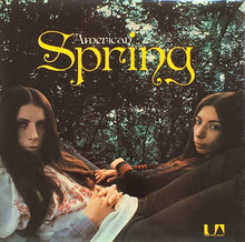 <cite>American Spring</cite> by American Spring album art