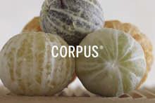 Corpus Naturals deodorants