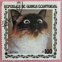 Cat stamps from Equatorial Guinea