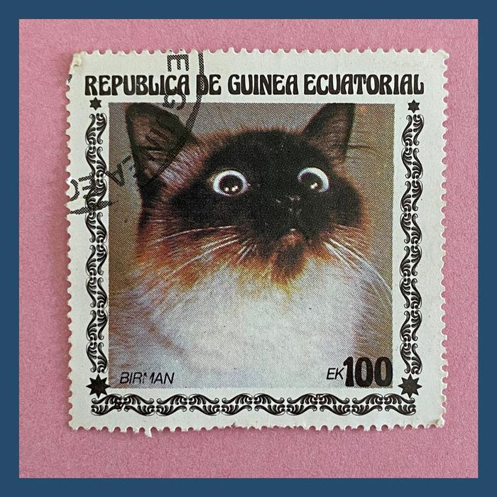 Cat stamps from Equatorial Guinea 4