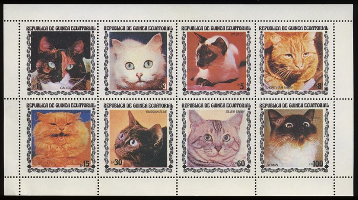 Cat stamps from Equatorial Guinea 1