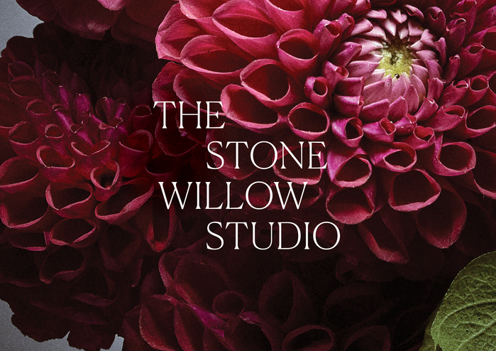 The Stone Willow Studio 1