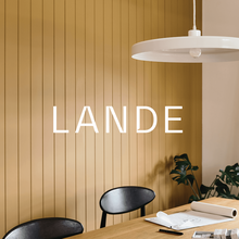 Lande Architects visual identity