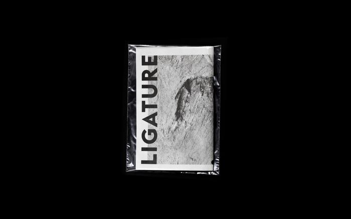 Ligature Paper 1