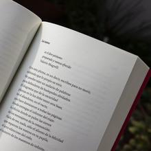 <cite>El último hablante</cite> by Osvaldo Costiglia