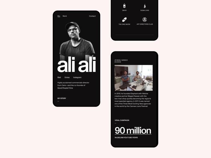 Ali Ali website 6