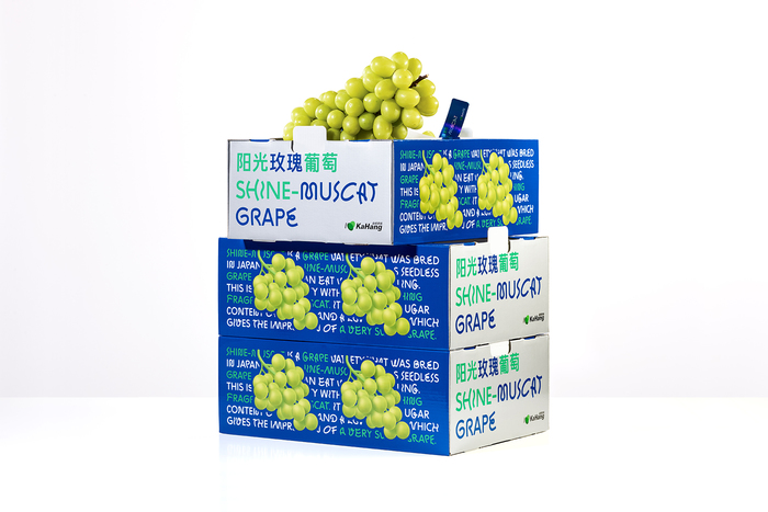 Shine-Muscat Grape 2