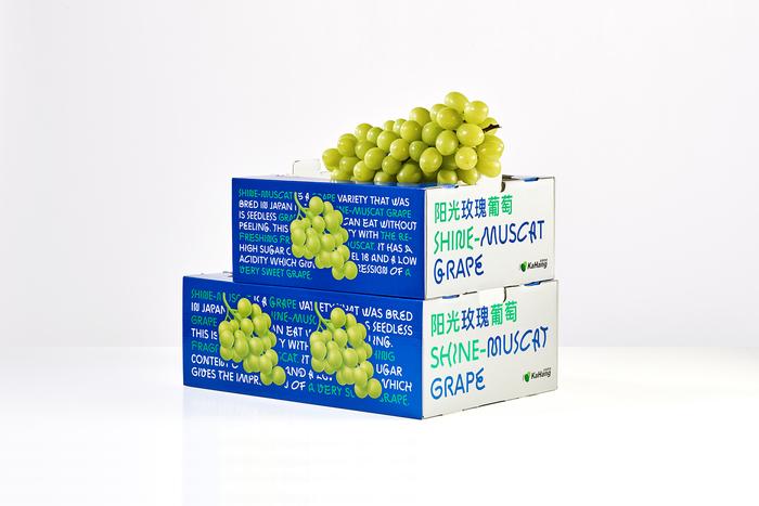 Shine-Muscat Grape 5