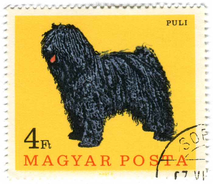 Hungary Postage Stamps: Dogs (ca. 1967) 2