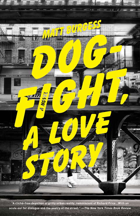 Dogfight, A Love Story by Matt Burgess 3