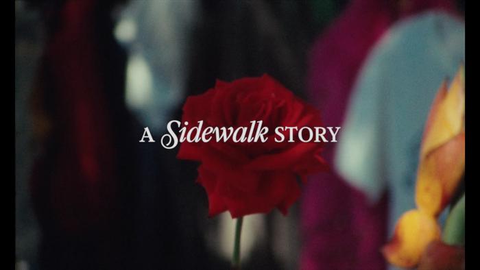 A Sidewalk Story 7