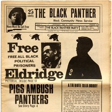 <cite>The Black Panther: Black Community News Service</cite>