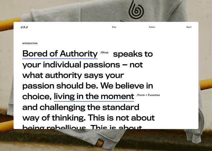 Bored Of Authority website 1
