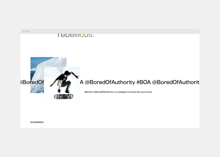 Bored Of Authority website 5