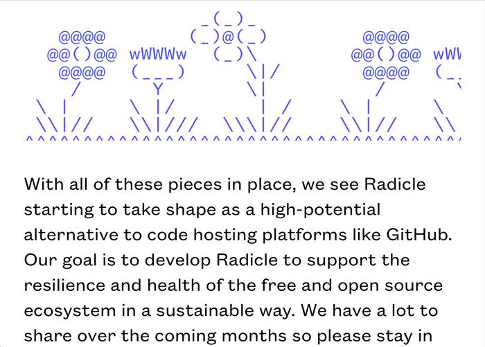 radicle.xyz 4
