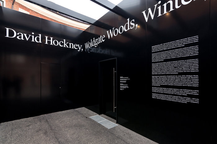 David Hockney – Woldgate Woods, Winter, 2010 6