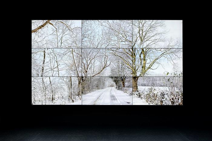 David Hockney – Woldgate Woods, Winter, 2010 5