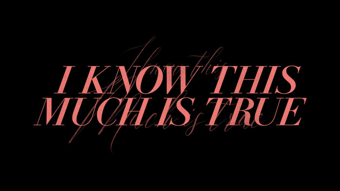 I Know This Much Is True (HBO series) 4
