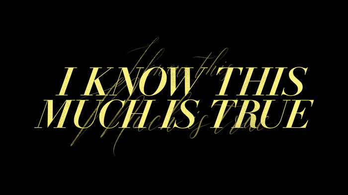 I Know This Much Is True (HBO series) 2