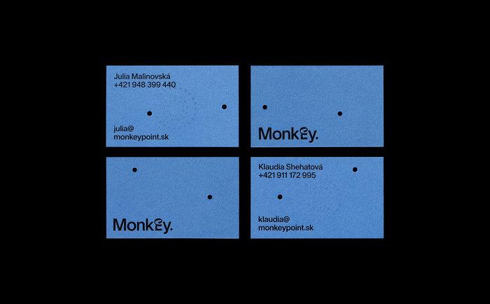 Monkey Point 2