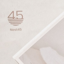 Nest45 real estate