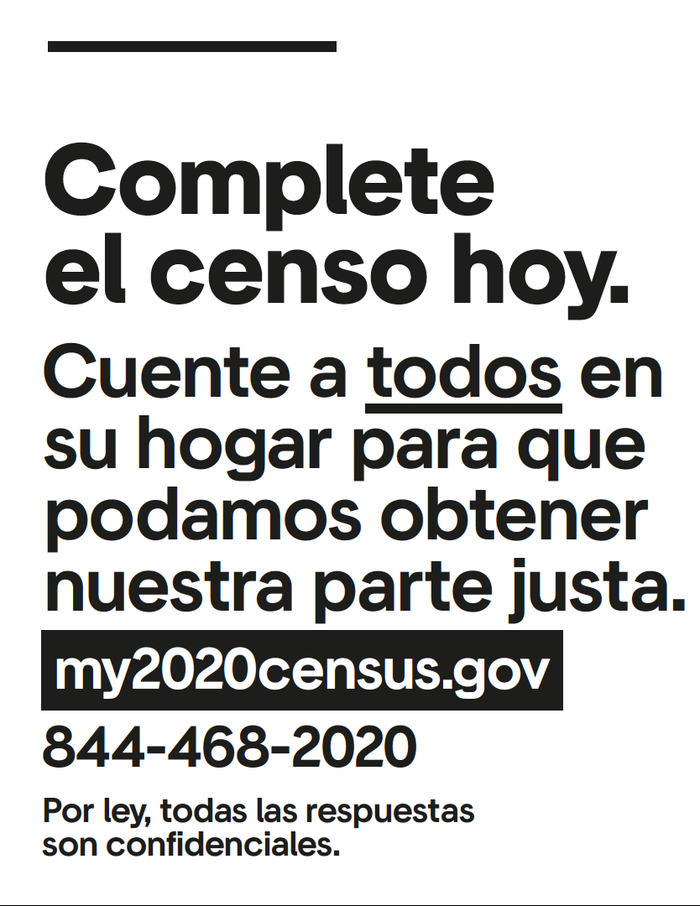 My 2020 census poster series 2