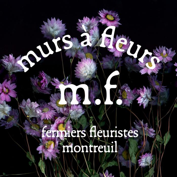 Murs à fleurs visual identity 4