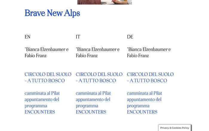 Biennale Gherdëina website 3