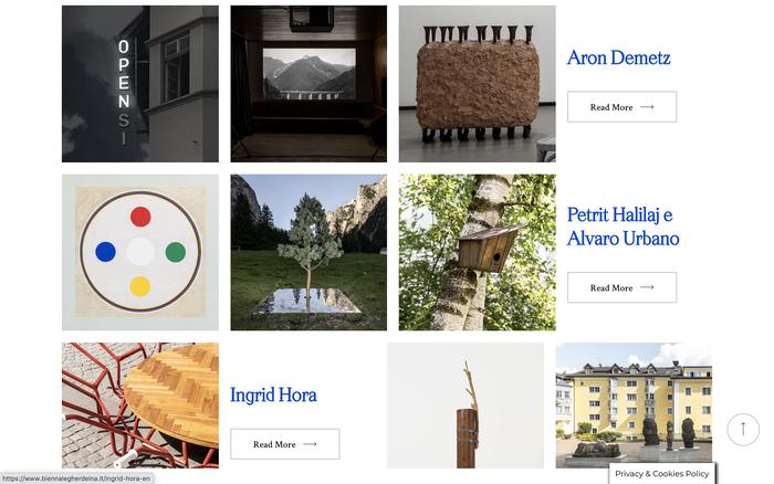 Biennale Gherdëina website 4