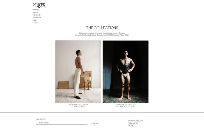 Pellicer website 2