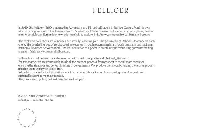 Pellicer website 3