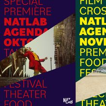 NatLab visual identity and website