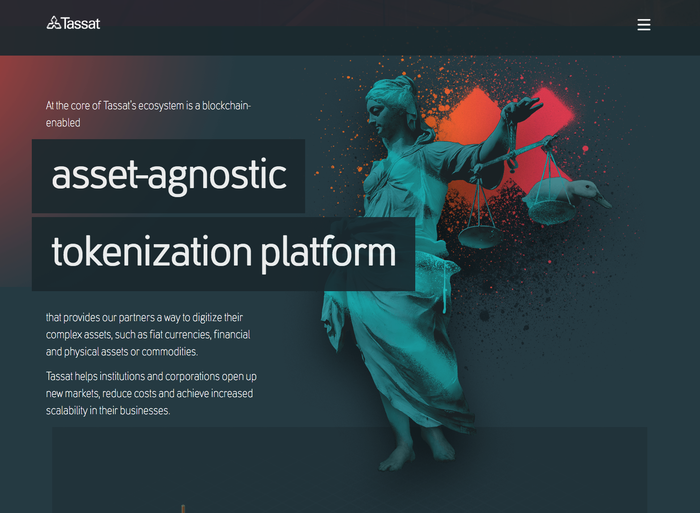 Tassat website 4