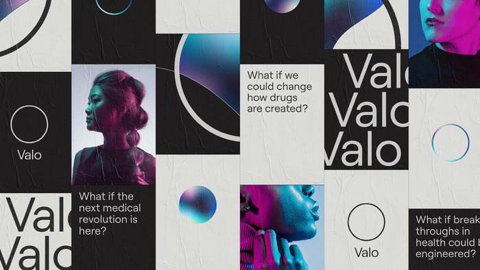 Valo Health 2