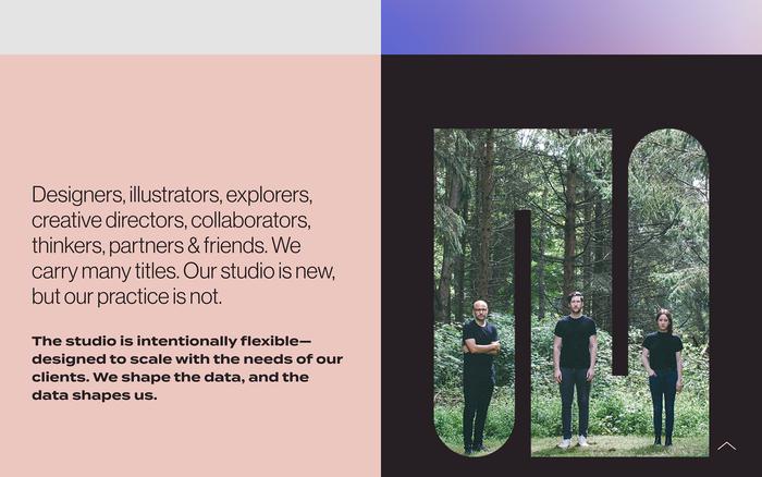 Datalands Studio website 4