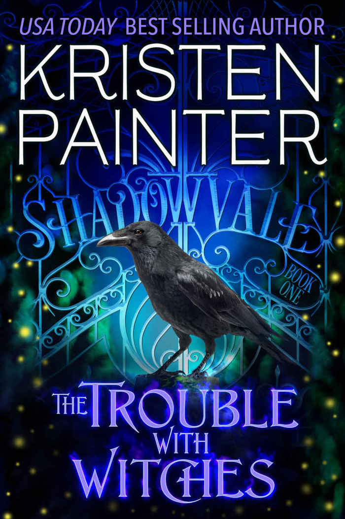 """The sans serif used for """"best seling author"""" might be  Condensed. The caps used for the author's name are either custom drawn or from an unidentified typeface. So are the swashy seriffed letterforms that spel out """"Shadowvale"""" in the gate shown in the illustration."""