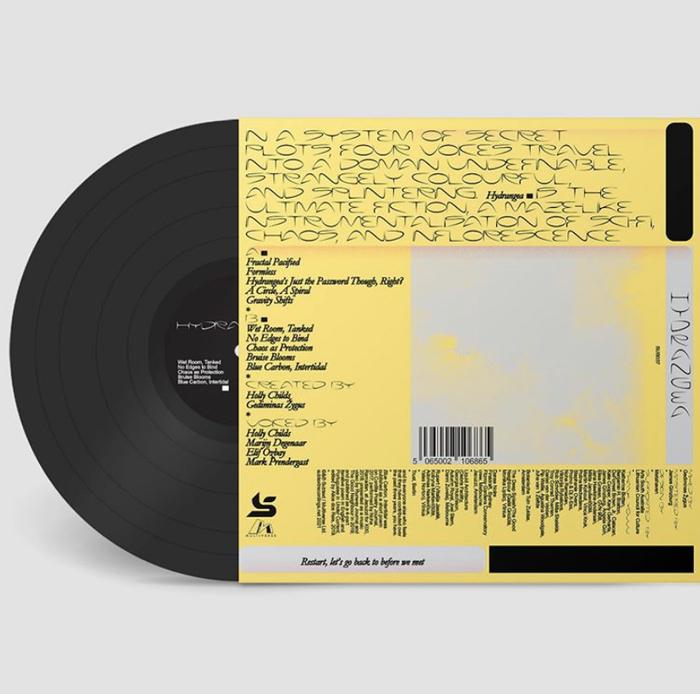 Hydrangea by Holly Childs & Gediminas Žygus album art 2