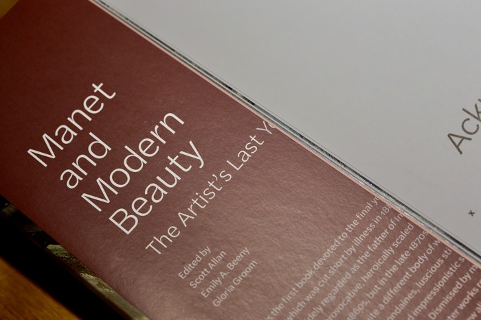The title is repeated on the inner flap, shown reversed in a light weight from Halyard Text.
